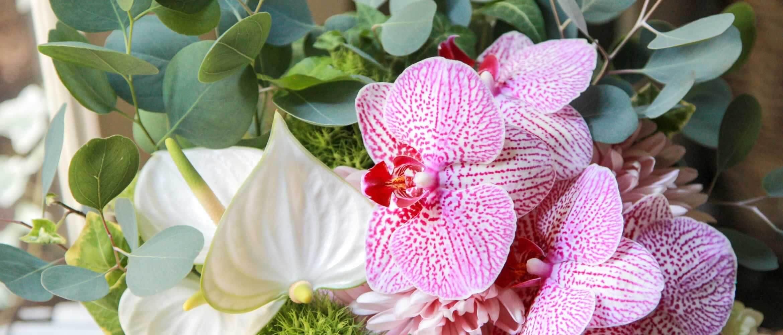 Autmun Flowergift